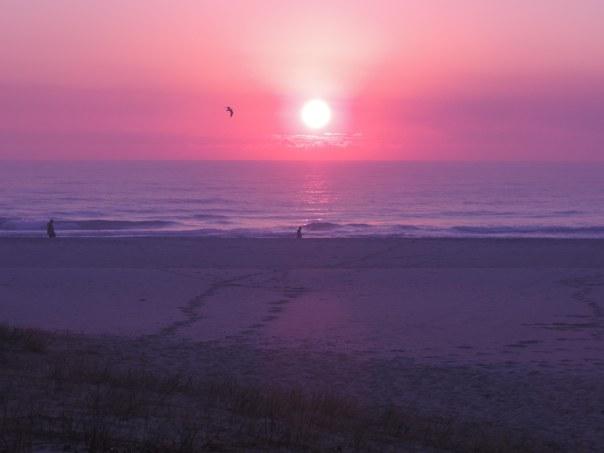 1st Aug 14 Sun 5