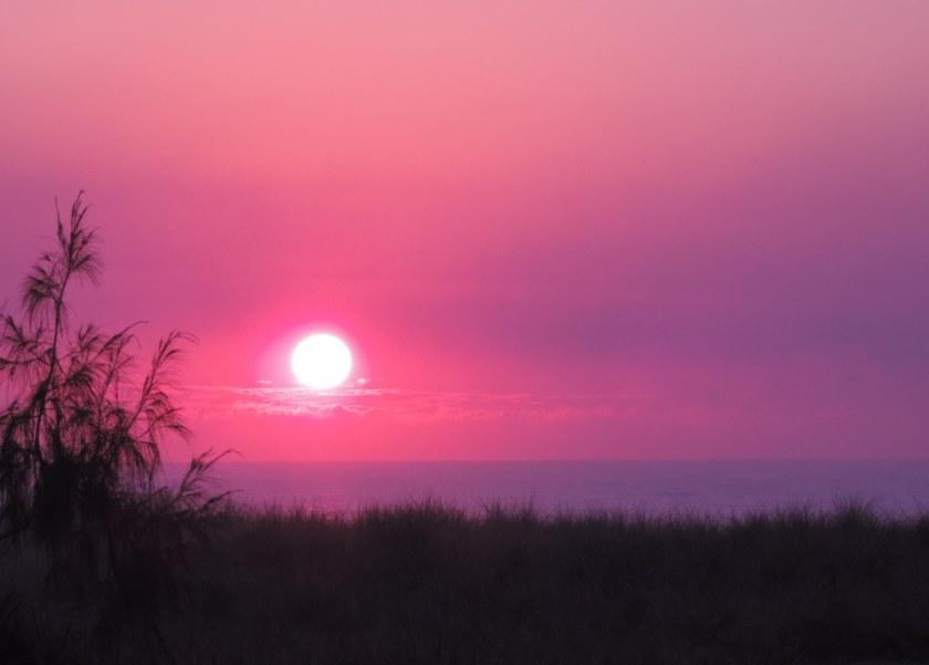1st Aug 14 Sun