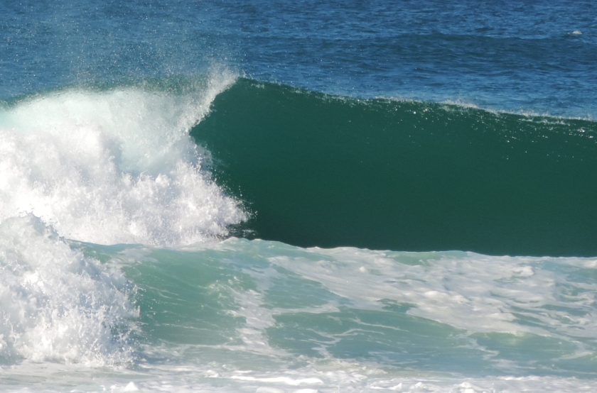Ride the wave of life by committing to give back to our world.