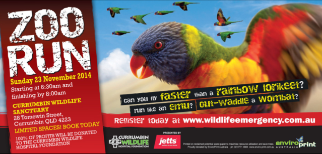 Register for Zoo Run. What a fun way to raise money for sick animals!
