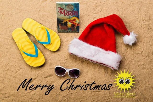 Pair of flip flop sandals, sunglasses, Santa hat and camera.