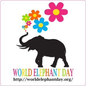World Elephant Day 2018 #BeElephantEthical